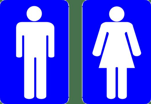 Gender vs Gender Roles
