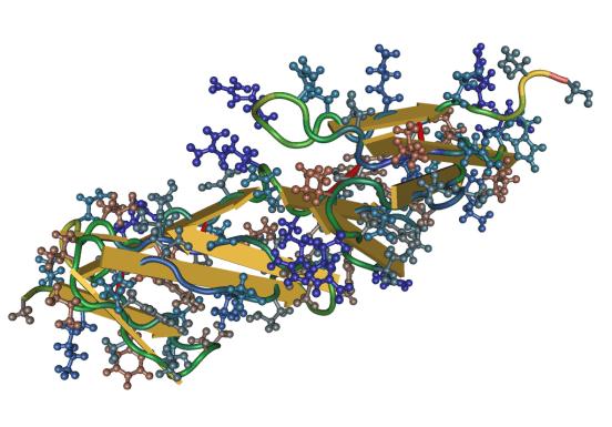 Fibronectin vs Vitronectin
