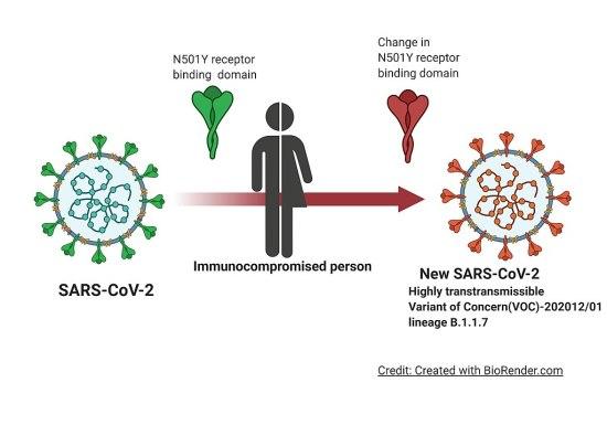 Immunocompromised Definition