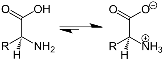 Zwitterion and Dipole - Side by Side Comparison