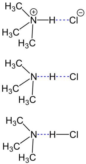 Hydrochloride and Dihydrochloride - Side by Side Comparison