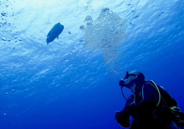 A reform in recreational diving in France coming soon ?
