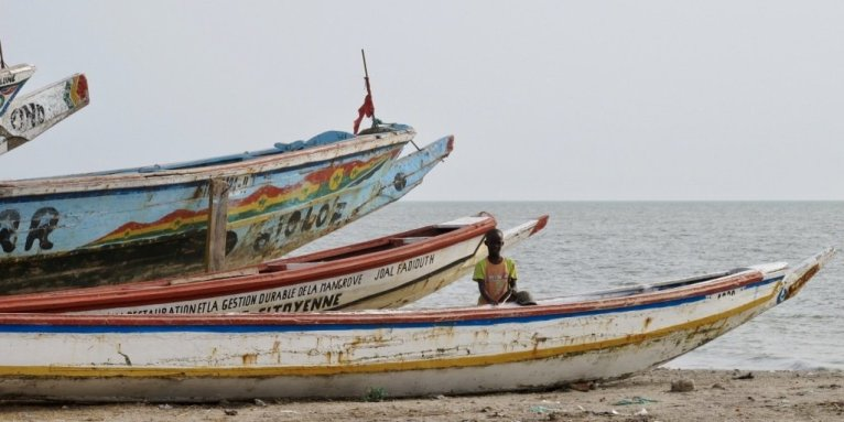 Destination de plongée peu courante, le Sénégal regorge de richesse