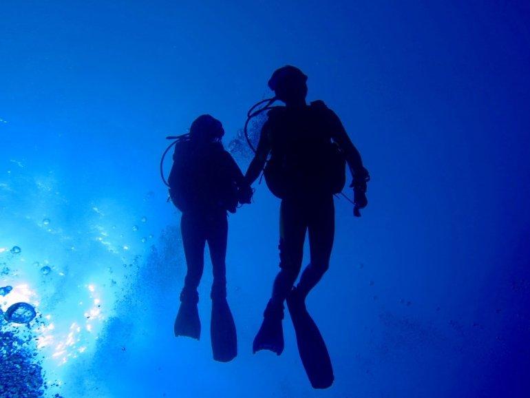 Des jeunes plongeurs occupés à plonger en couple se donnent la main sous l'eau.
