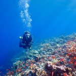 Une femme en plongée en Egypte
