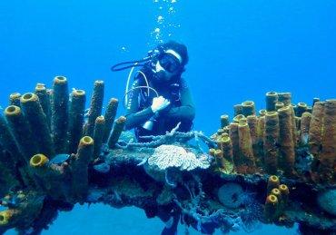 12 destinations pour plonger en France «hors métropole»