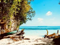 Paysage de plage en Micronésie faisant partie des destinations de plongée souvent citées comme préférée