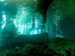 Des nageurs évoluent en snorkeling à la surface du cénote de Dos Ojos