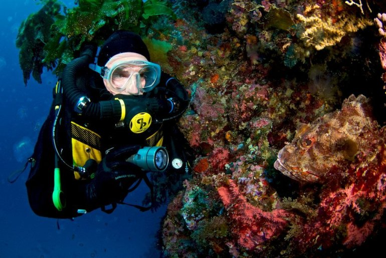 Martin Parker occupé à plonger