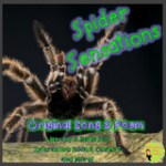 interactive book spider counting