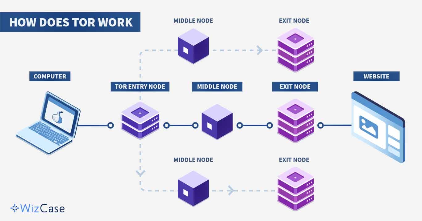 Tor Working Process