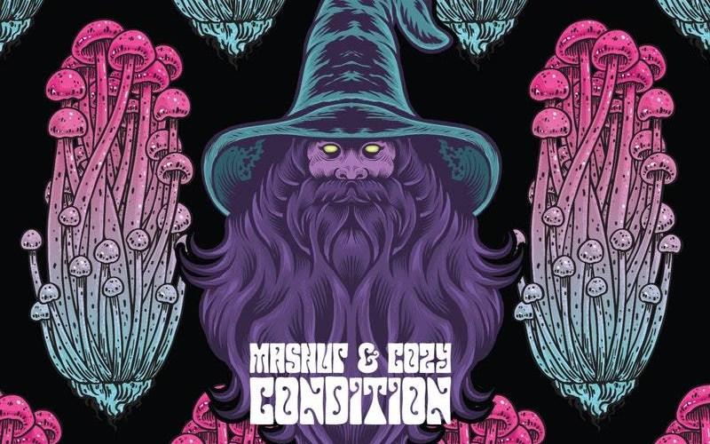 "Mashup & Cozy Condition (@CozyMashup) – ""Fly Wizard Fly"""