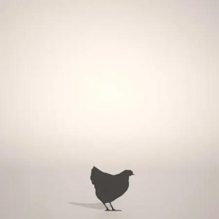 formZ 3D シルエット silhouette 動物 animal 鳥 とり バード bird 鶏 ニワトリ にわとり chicken 酉