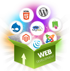 Website Development Services in Delhi India
