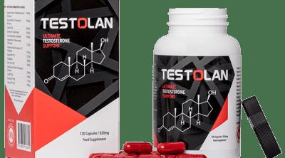 Testolan Review
