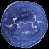 L-Arginine Hydrochloride Ingredient