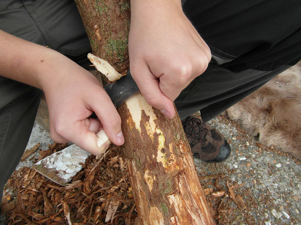 Figure 5: Removing the outer bark of the bow stave using a flint blade which is held like a drawknife.