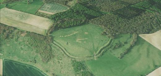 Forest Hill Farm Hillfort, Wiltshire
