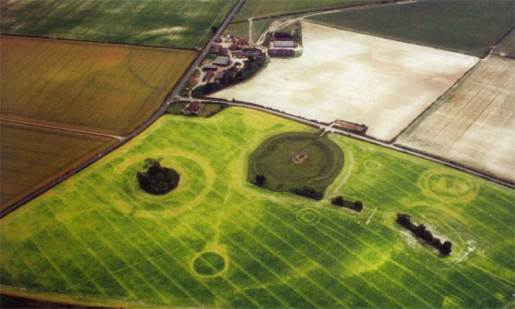 Image 1 - Knowlton Neolithic Complex in 1995, courtesy of a pea crop in drought. © Martin Green