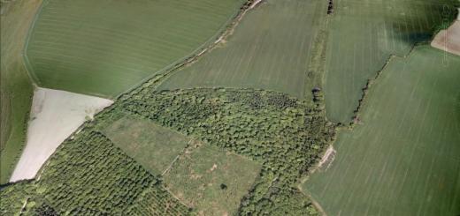 Odstock Copse Hillfort, Wiltshire