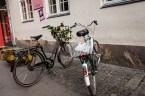 Bicycles on a Copenhagen Street
