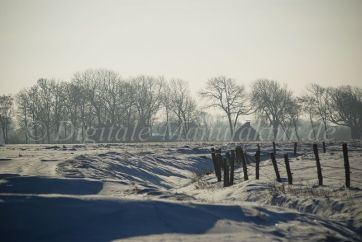 Winterlandschaft-54