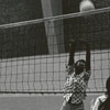 Volleyball at Wake Forest