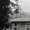 Log House and Tobacco Field