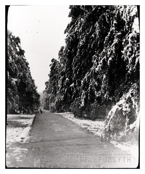 'Snow Scene, Cedar Avenue'