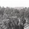 """""""Douthit's Mill Yadkin River"""""""