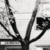Mickey's Tin Shop - Lot 113