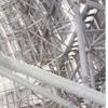 Interior framework of the new Wachovia Center dome, 1996.