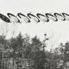 Boys flying kites, 1961.