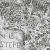 Gravestone in God's Acre at Bethabara Moravian Church, 1959.
