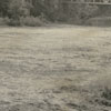 Yadkin River flood, 1957.