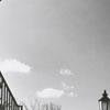 Wake Forest College campus, 1956.