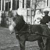 Richard J. Reynolds children with a pony cart.