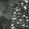 Unidentified women singing in front of the Christmas tree at the Children's Home on Reynolda Road, 1958.