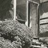 Steps leading to the parsonage for Bethabara Moravian Church, 1938.