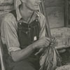 Man tying tobacco in front of a tobacco barn, 1939.