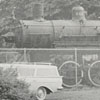 Miniature train and full-size locomotive at Tanglewood Park.