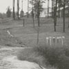 Flood waters on Janita Drive, 1959.