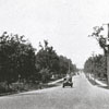View of Stratford Road looking north from Buena Vista Road, 1931.