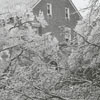 Ice storm hits Winston-Salem and damages trees throughout the city, 1967. Photo shows the Stewart Pratt house.