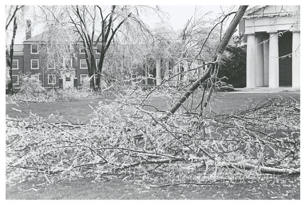 Ice storm hits Winston-Salem and damages trees throughout the city, 1967. Photo shows the Wake Forest campus and Wait Chapel.
