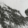 David Enochs playing in the snow, 1962.