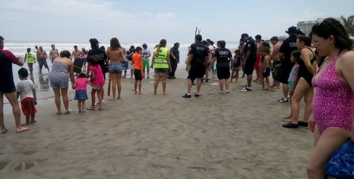 gendarmeria_apoyo_tortugas_acapulco (1)