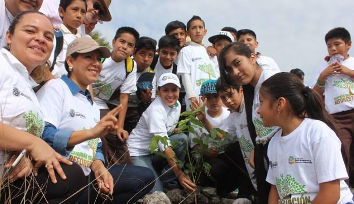reforestación_guerrero_semaren (1)