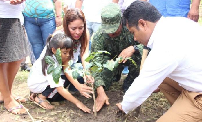 campaña_reforestación_ometepec