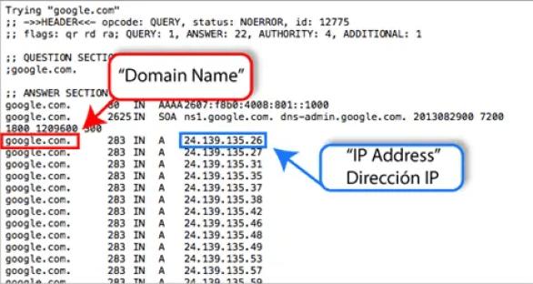 DNS-Example